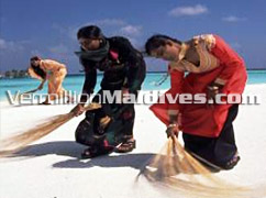 Clean Beaches in Resort Vilivaru Island Resort – Local Island Excursions give you the Maldivian experience