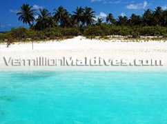 Beach, Sun and the Clear waters - Vilu Reef Beach and Spa Maldives