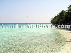 Clear Waters and Beach - Vivanta by Taj Resort, Corel Reef – Exquisite Maldives
